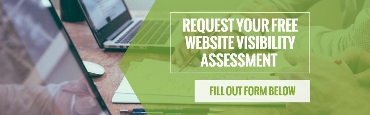 Website Visibility Assessment